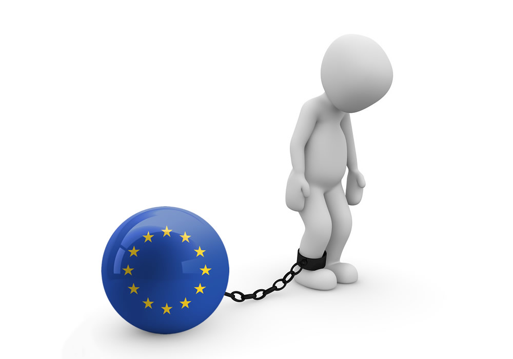 Programové teze DSSS k volbám do Evropského parlamentu